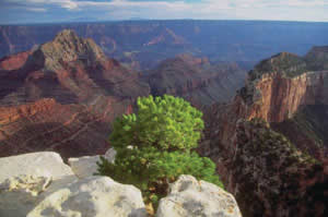 Grand Canyon National Monument